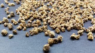Bio Saatgut Rote Bete. Gute Keimfähigkeit für Sprossen und Mikrogrün
